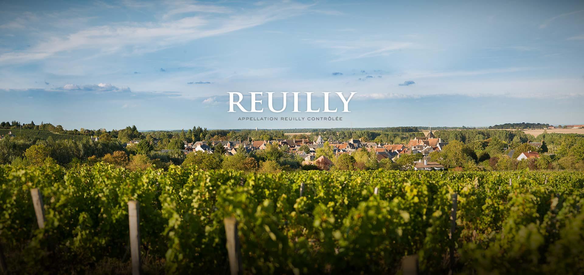 vignoble-reuilly-vins-sur-20-la-cave-landaise