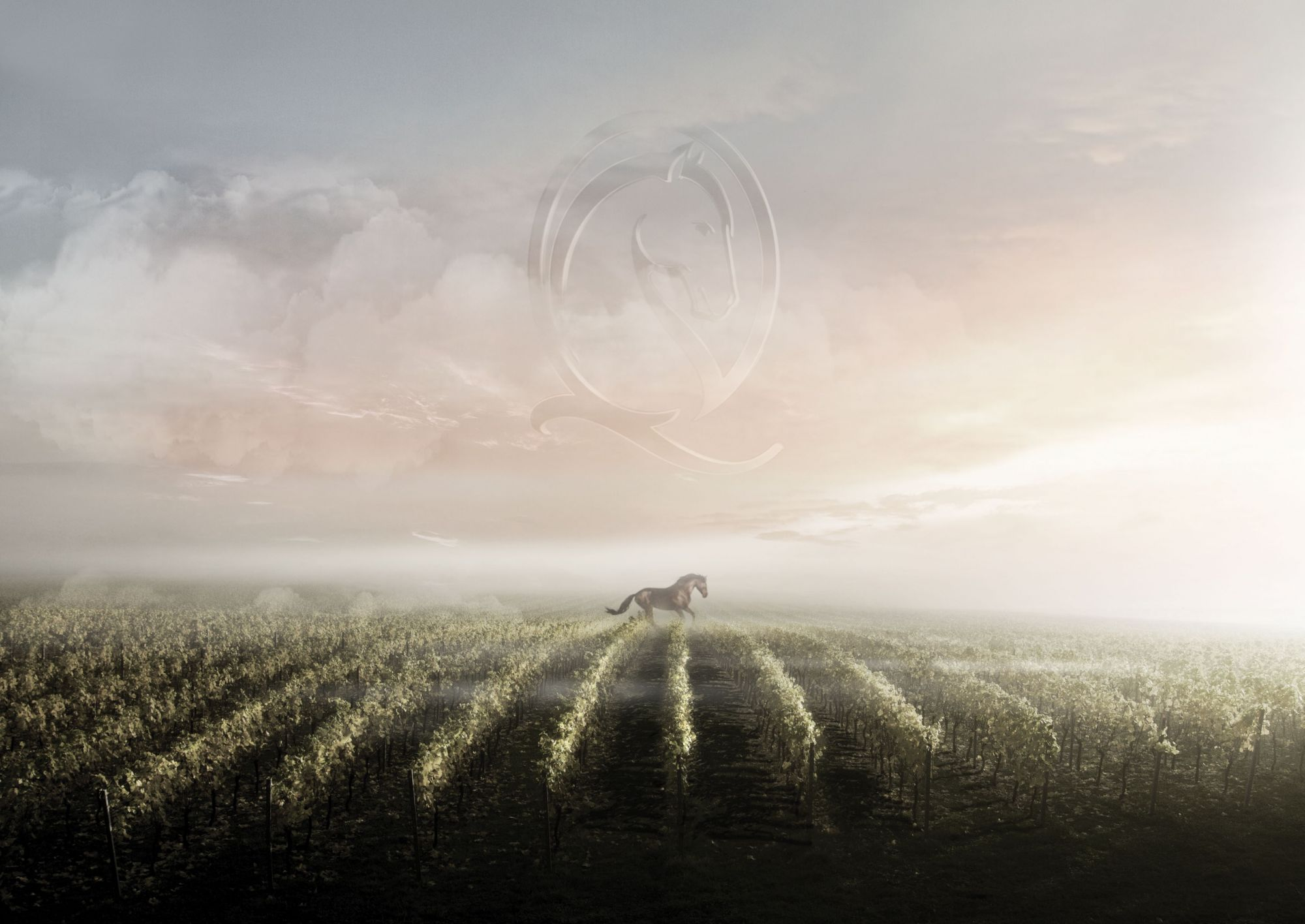 haut galot cheval quancard la cave landaise vins sur 20