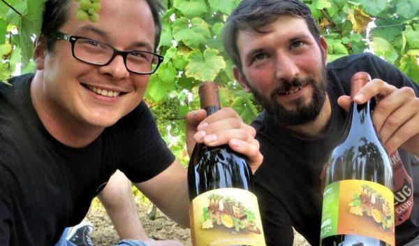 wine hop vin houblonné melon amarillo